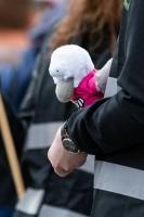 DJG beteiligt sich an Protestkundgebung am 12.04.2018_3